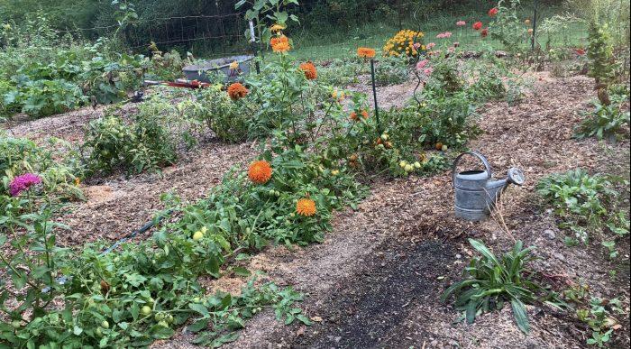 Wild Heaven Farms Garden Tour